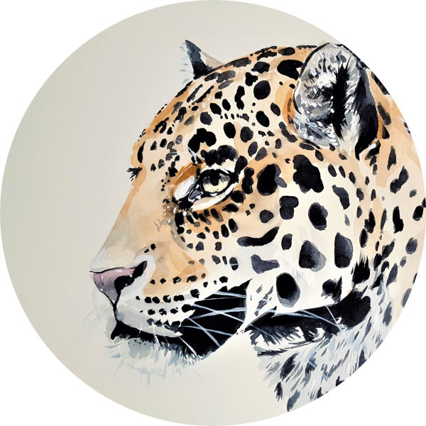 Tortenaufleger Jaguar